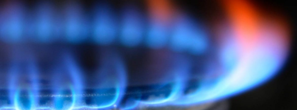 Gas Inspection Company for Sale