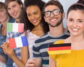 escola de línguas para venda