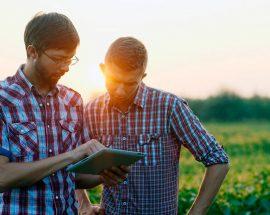 Programa Jovem Agricultor